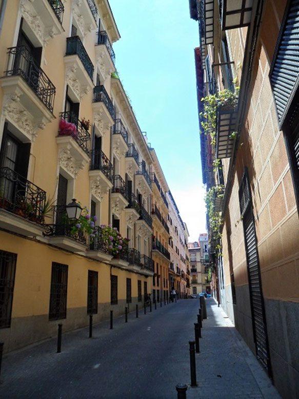 Madrid Museum Tours Strolls in Madrid