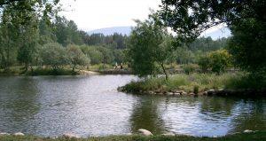 Cuenca rio Lozoya
